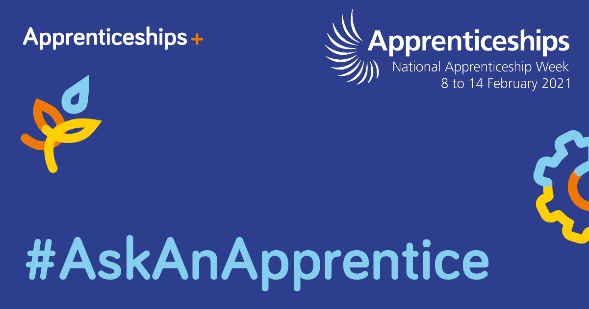 Ask an Apprentice image